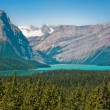 Canadian wilderness in Alberta, Canada — Stock Photo