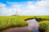 Beautiful landscape with small pond and lighthouse in the background at North Sea in Nordfriesland, Schleswig-Holstein, Germany — Stock Photo