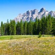 Panoramic view of beautiful landscape with field of flowers and Rocky Mountains in the background in Jasper National Park, Alberta, Canada — Stock Photo #38809857