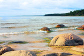 Stony coast of the Baltic Sea — Stock Photo