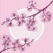 Stock Vector: Vector invitation or card from blossoming Japanese cherry