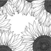 Frame of vector sunflowers — Stock Vector