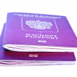 Royalty-Free Stock Photo: Two foreign passport on a white background