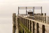 Muelle de madera con los pájaros sentado en él — Foto de Stock