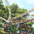 Kathmandu-prayer flags waving in Swayambhunath Stuparea. — Stock fotografie #19031845