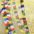Colorist buddhist prayer flags. Boudhanath-Bodhnath stupa. Kathmandu-Nepal. 0320 — Stock Photo