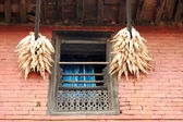 Hanging corn ears. Bandipur-Nepal. 0396 — Stock Photo