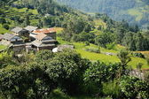 Homesteads of Dhampus village-Nepal.. 0478 — Stock Photo