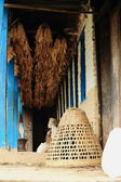 Wicker basket under corn cobs. Landruk-Nepal. 0573 — Stock Photo