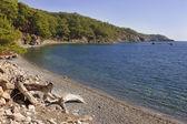 Bay at Phaselis, Turkey — Foto de Stock