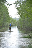 Cycling onto a flooded pathway. — Stock Photo
