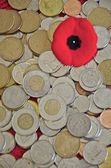 Poppy and Coins from a poppy collection — Stock Photo