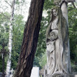 Ancient sculpture of angel on cemetery — Stock Photo #11939429