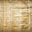 Stock Photo: Old vintage blank Egyptian papyrus background texture