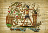 Old egyptian papyrus — Stock Photo