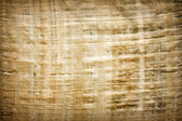 Old vintage blank Egyptian papyrus background texture — Foto Stock