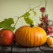 Autumn pumpkins and corn vintage still life — Stock Photo