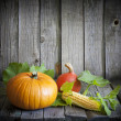 Autumn pumpkins and corn vintage still life — Stock Photo #12732203