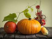 Podzimní dýně a kukuřice vinobraní zátiší — Stock fotografie