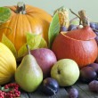 Vegetables and fruits in autumn season still life — Foto Stock