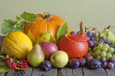 Vegetables and fruits in autumn season still life — Stock Photo