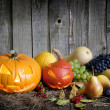 Halloween pumpkins fruits and vegetables autumn still life — Zdjęcie stockowe