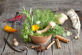 Herbs and spices in mortar on wooden boards — Stock Photo