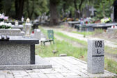 Cemetery and finding right way — Stock Photo