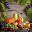 Fruits and vegetables with pumpkins in autumn still life — Foto de Stock