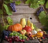 Fruits and vegetables with pumpkins in autumn still life — Stock Photo