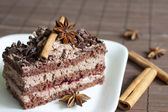 Chocolate cake gingerbread and spices — Stock Photo
