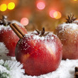 Christmas food apples on snow closeup and blurred background — Stock Photo #14078936