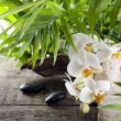 Orchids candle and stones on wooden boards background — Stock Photo