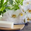 Spa soap orchids and stones on white background with palm — Stock Photo