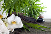 Spa concept decoration with orchids palm and zen stones — Stock Photo
