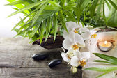 Orchids candle and stones on wooden boards background — 图库照片