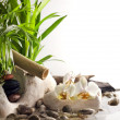 Orchids and zen stones on water spa concept on white background — Stock fotografie