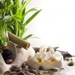 蘭の花と禅石水スパのコンセプトは白い背景の上に — ストック写真