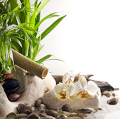 Orchids and zen stones on water spa concept on white background — Stock Photo