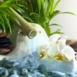 Orchids and zen stones with falling water spa concept — Stock Photo