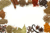 Herbs and spices border on white background — Stock Photo