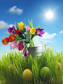 Easter eggs and flowers on meadow with sky abstract concept — Stock Photo
