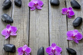 Orchids and spa stones border background on wooden boards — Stock Photo