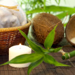 Bamboo and coconut milk spa cosmetic still life — Stock Photo