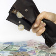 Stockfoto: Bank wife and tax squeezed polish money out of wallet concept