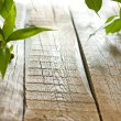 Bamboo on wooden boards with spa stones background concept — Stock Photo