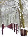 Zimowy las i most drewniany w śniegu — Zdjęcie stockowe