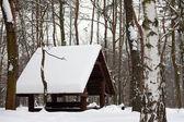 зимний лес и деревянный дом в снегу — Стоковое фото