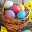 Colorful easter eggs in the basket closeup — 图库照片