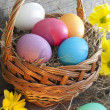 Colorful easter eggs in the basket closeup — Stock Photo